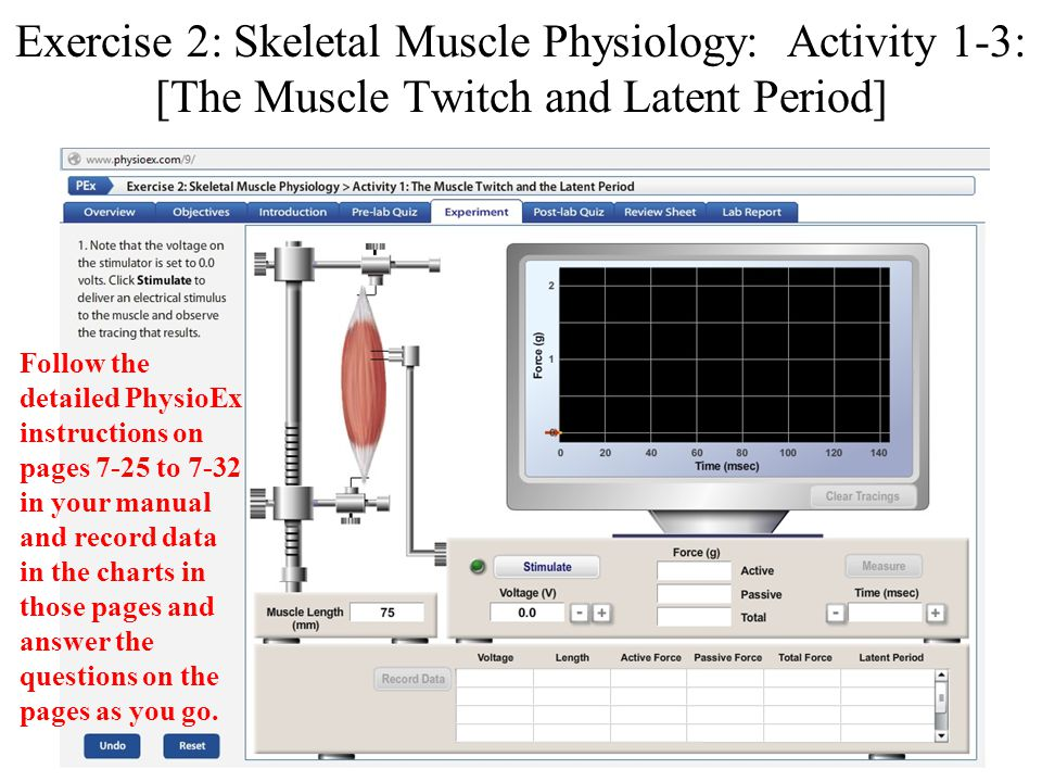 exercise 2 activity 4 physioex 9 Vocabulary for physioex exercise 2 activity 1 find, create, and access biology, flashcards with course hero physioex 90 exercise 2 activity 2 answers.
